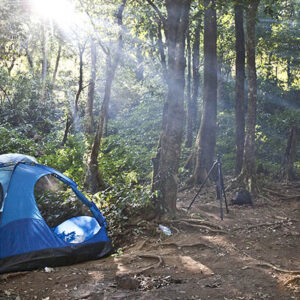 blue camping tent in the forest